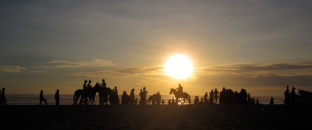 Canoa Horses at Sunset